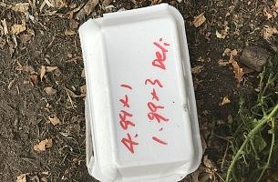 Styrofoam Food Packaging