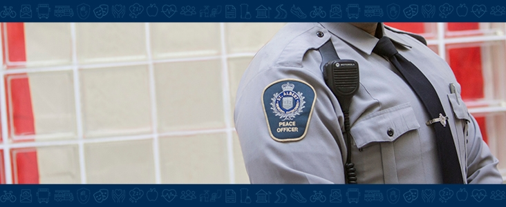 photo of peace officer and badge
