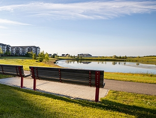 Park in Erin Ridge North