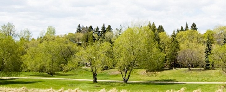Path along Sturgeon River with green grass and trees