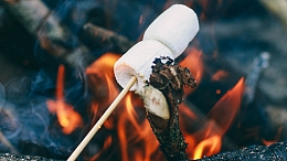 Marshmallows roasting over fire pit