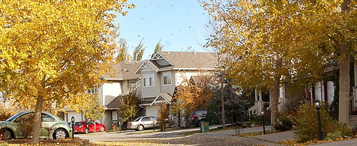 A photo of a residential neighbourhood in full fall foilage