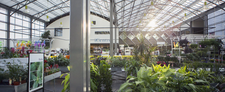 The sun sets through a lush greenhouse scene at the Enjoy Centre