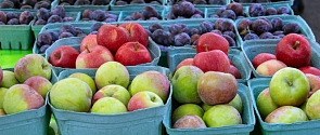 A selection of fresh apples and plums on display at the Farmers' Market