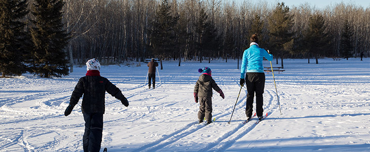 Photo of a family cross-country skiing.