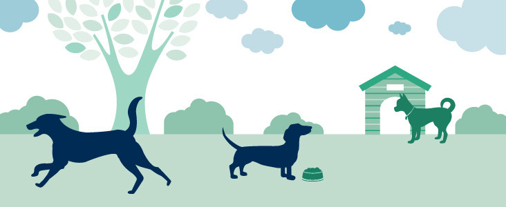Illustration of dogs in a park