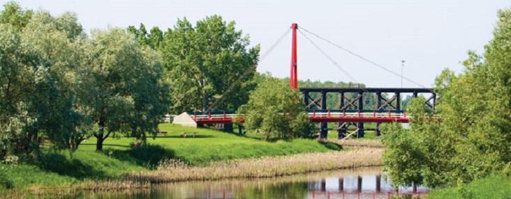 Photo of the river and Children's bridge