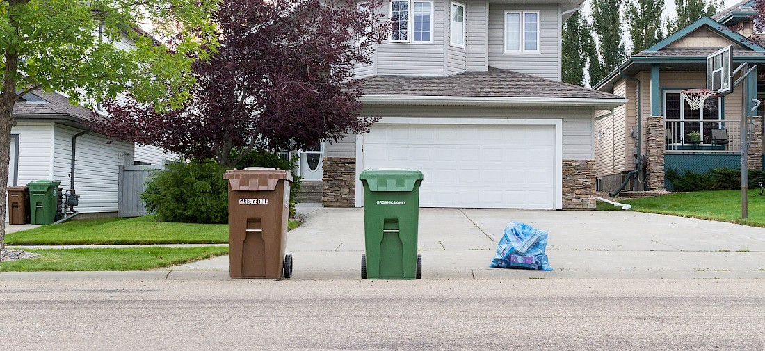 Bins on the curb