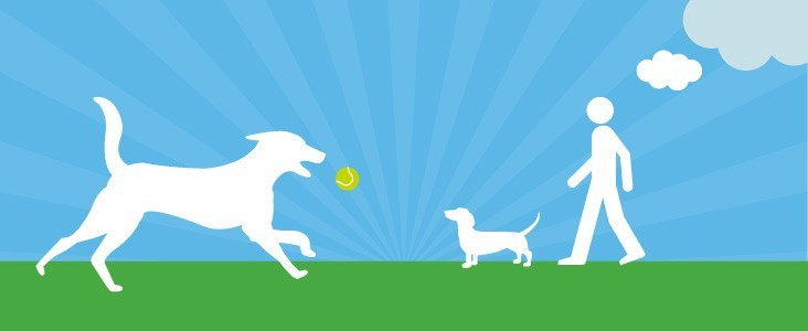 Illustration of dog chasing tennis ball and another person with a dog walking in front of them